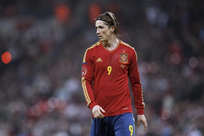L'Euro s'éloigne pour Fernando Torres