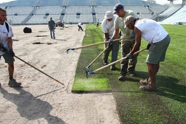La révolution de l'OM va jusqu'à la pelouse du Vélodrome