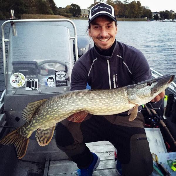 Photo : Quand Zlatan pêche, c'est pas des sardines