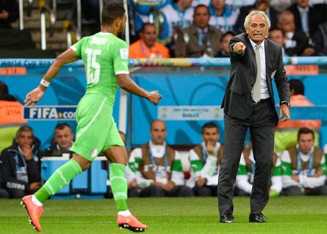 1,2,3... l'Algérie vaincra annonce Halilhodzic