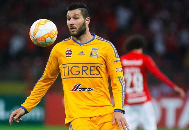 Mercato : Les Tigres démentent un contact avec le Barça pour Gignac