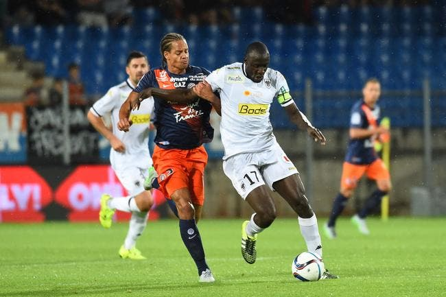 Angers - Montpellier : les compos