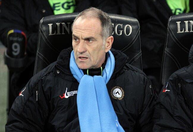 Guidolin nommé coach de Swansea