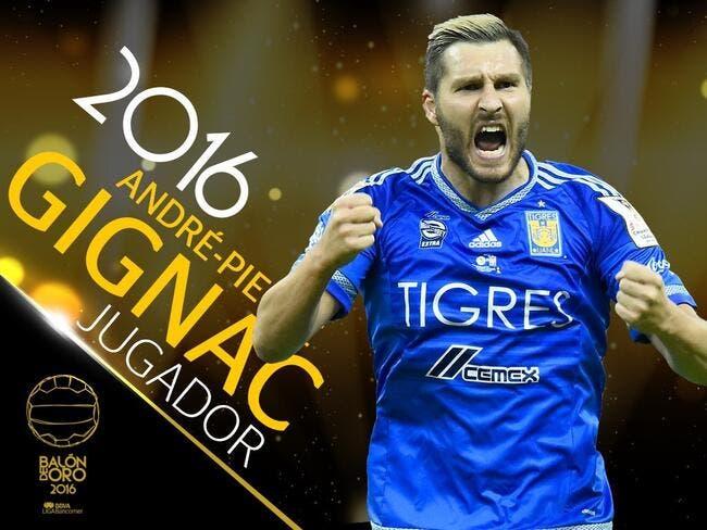 Gignac élu Ballon d'Or du Mexique