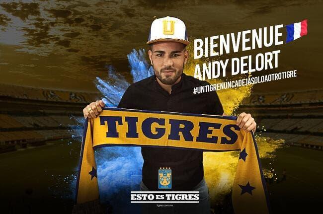 Officiel: Andy Delort signe aux Tigres