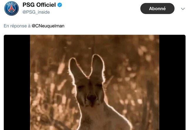 PSG : Quand le PSG trolle Aulas et son kangourou