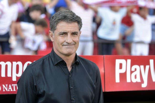 Liga : Michel viré par Malaga