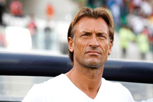 OL: Annoncé à Lyon, Hervé Renard fait un démenti suspect