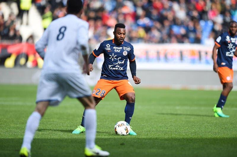 MHSC : Montpellier va jouer sa vie, Gasset est serein